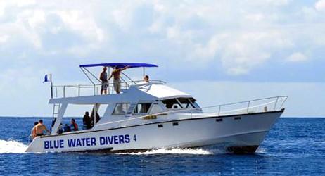 Blue-water-diving-hugues-vitry