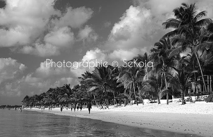 Photographe-mauritius-island