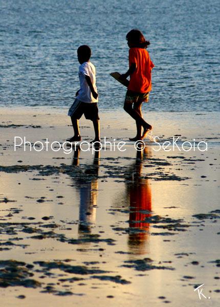 Reflet et lumière au soleil couchant - Ile Maurice