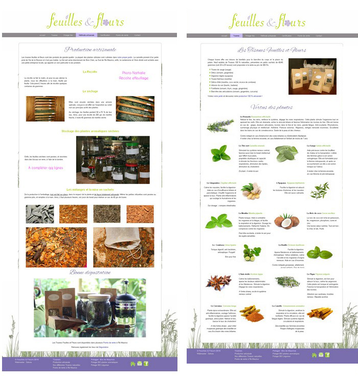 creation-site-web-ile-maurice-006