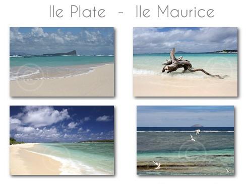 ile-plate-ile-maurice-116