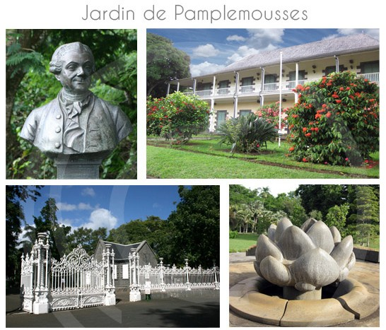 jardin-pamplemousse-ile-maurice-21