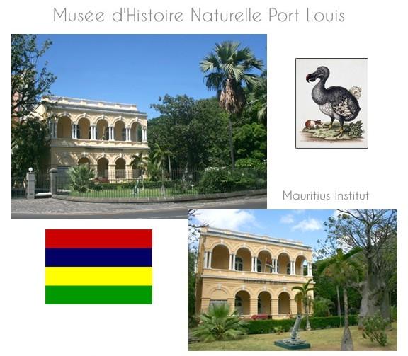 musee-ile-maurice-10