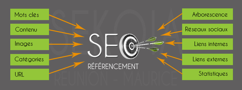 referencement-seo-reunion-maurice