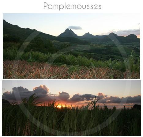 village-pamplemousse-ile-maurice-24